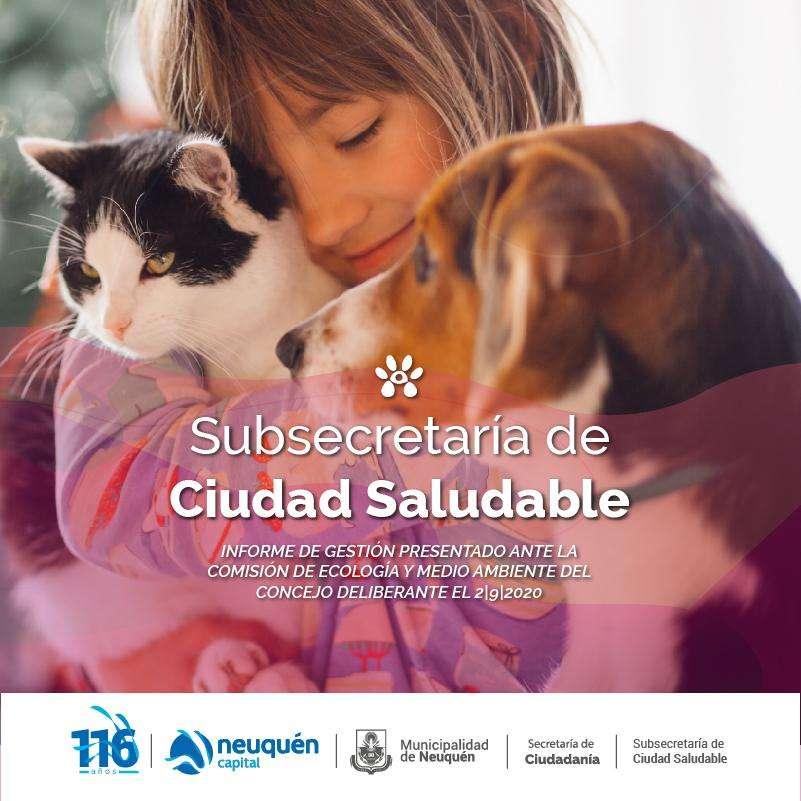 Subsecretaría de ciudad saludable, informe de gestión presentado.