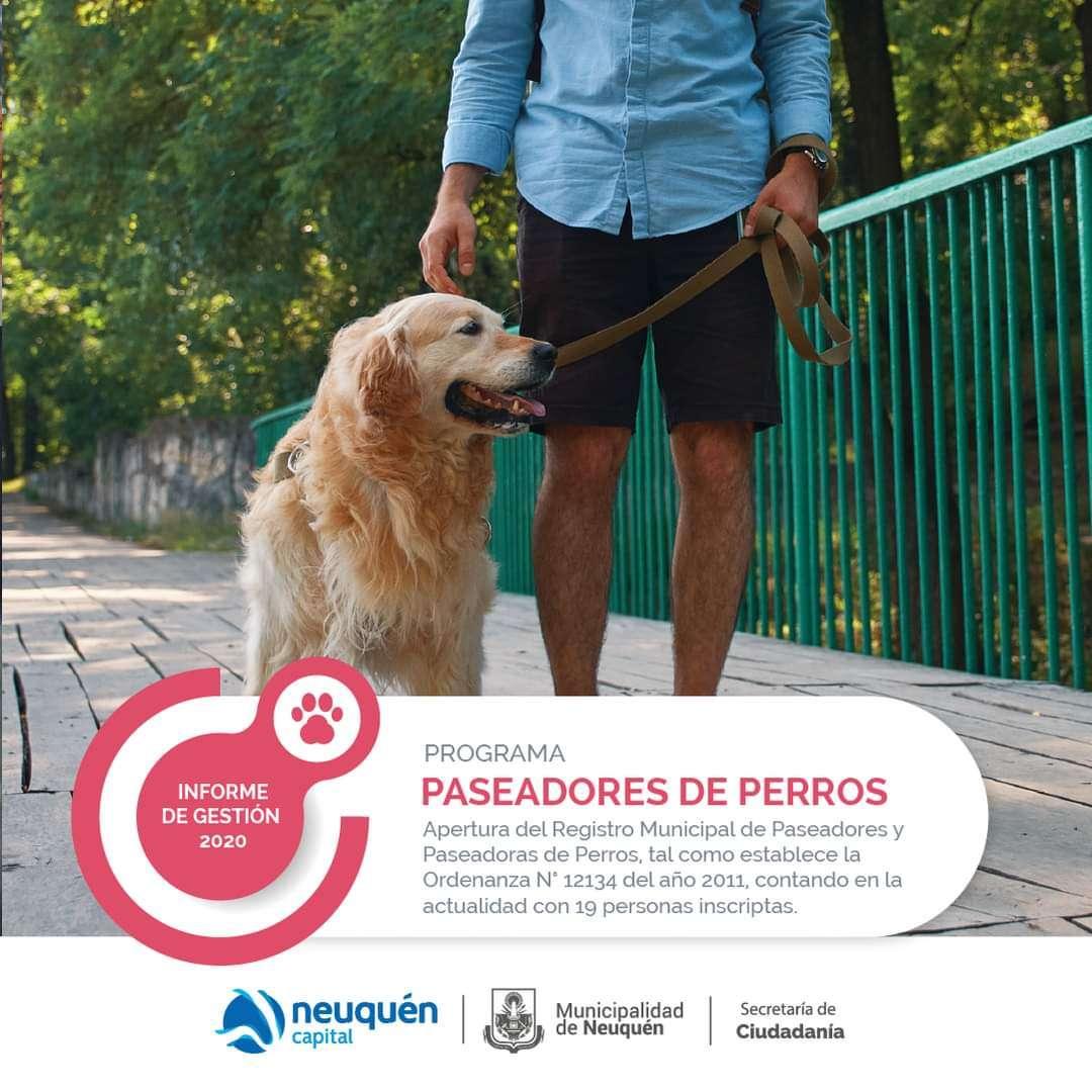 Programa paseadores de perros